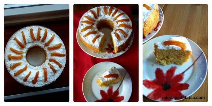 mindspinfabrica.com_orange cake