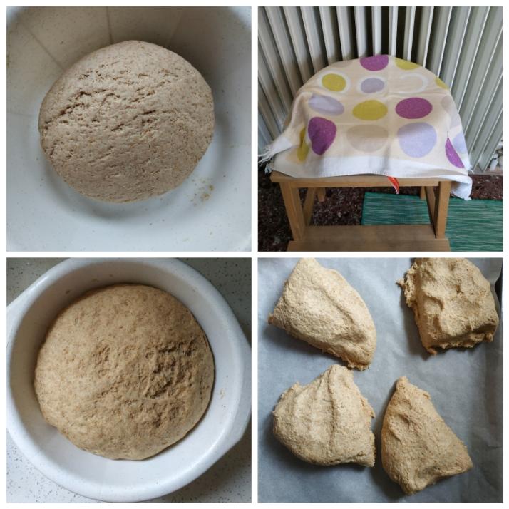 Ζύμη ψωμιού που έχει φουσκώσει_MindSpinFabrica