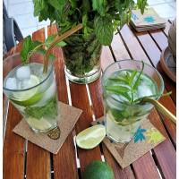 3 +1 συνταγές για καλοκαιρινά cocktails με ρούμι